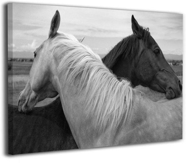country wall art black and white horse